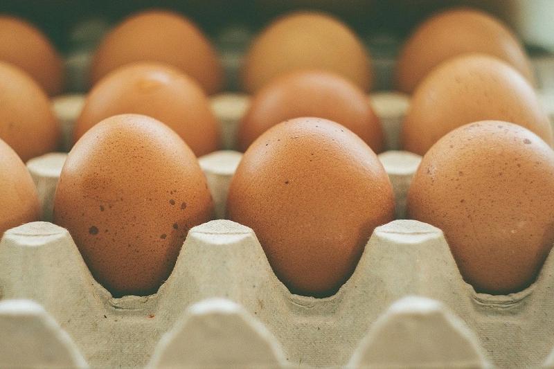 """Это стопроцентный фейк, — Жандарбек Бекшин о """"пластмассовых яйцах"""" из Китая"""